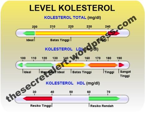 Level Kolesterol