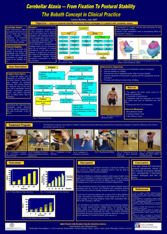 From Fixation To Postural Stability The Bobath Concept In Clinical